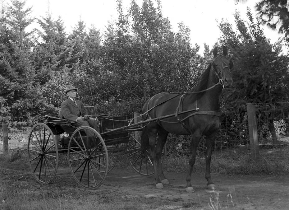 Herman Kresse and Carriage