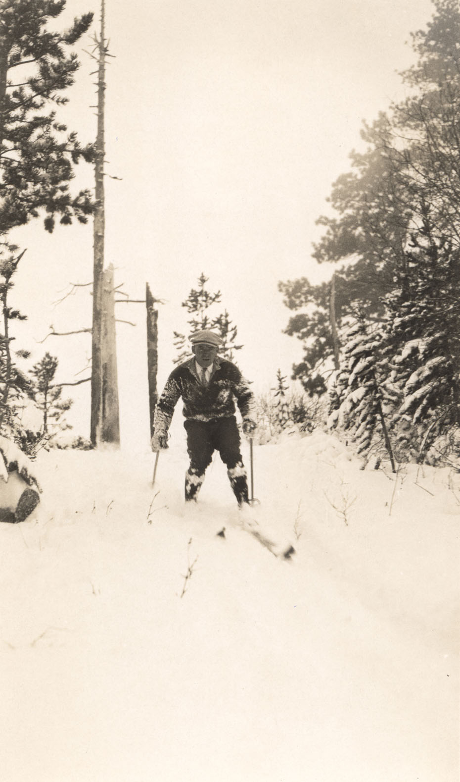A. L. Anderson Skiing