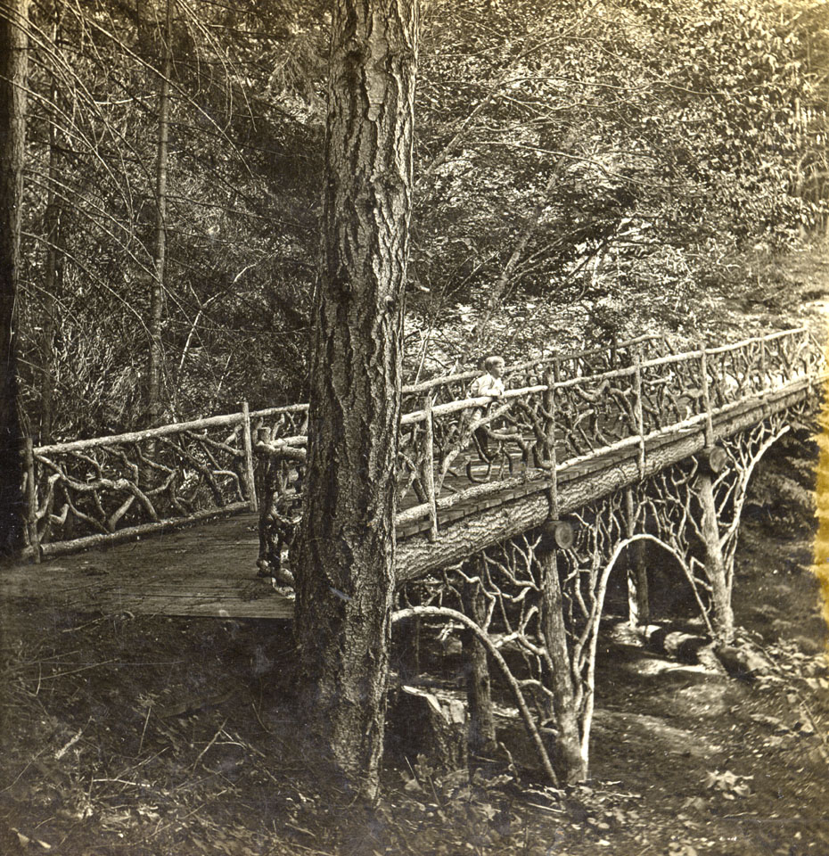 Rustic Bridge at Oak Grove