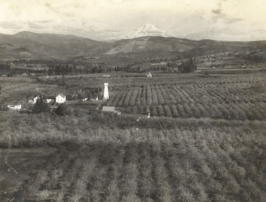 Liberty Home Orchard