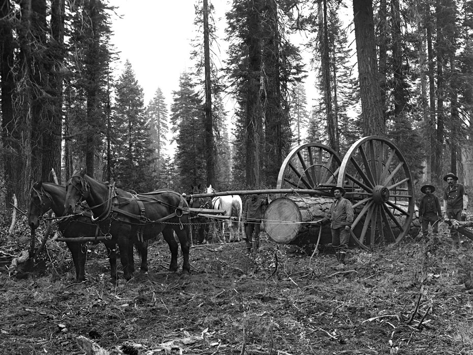 Slip Tongue Log Skidder Historic Hood River Images