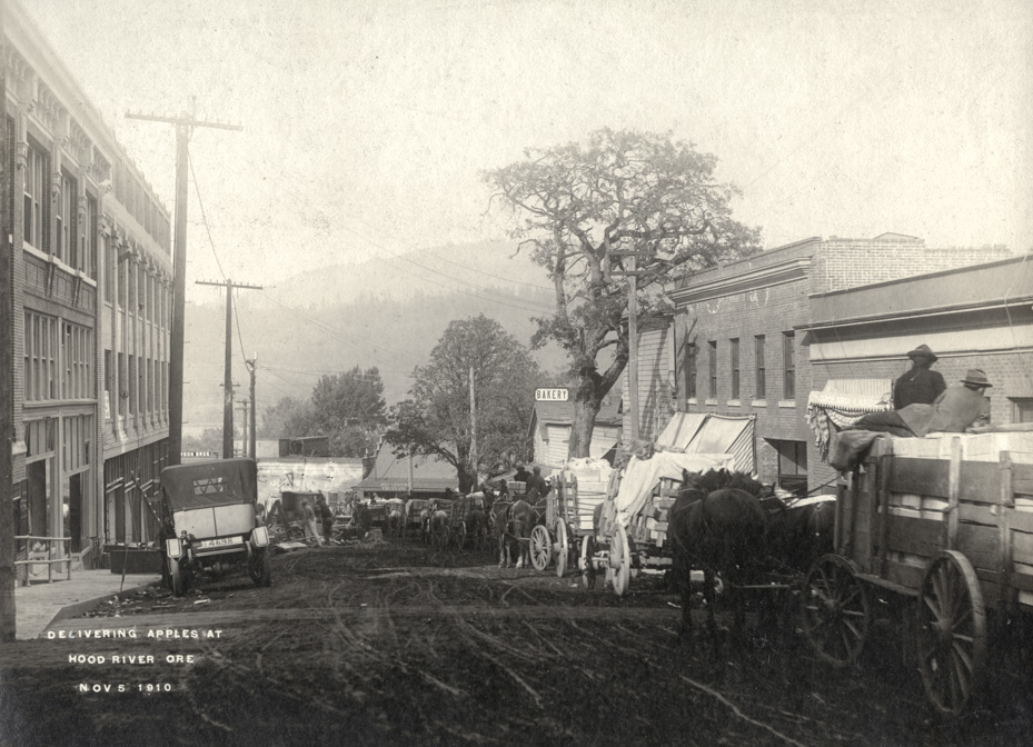 Delivering Apples at Hood River Ore.