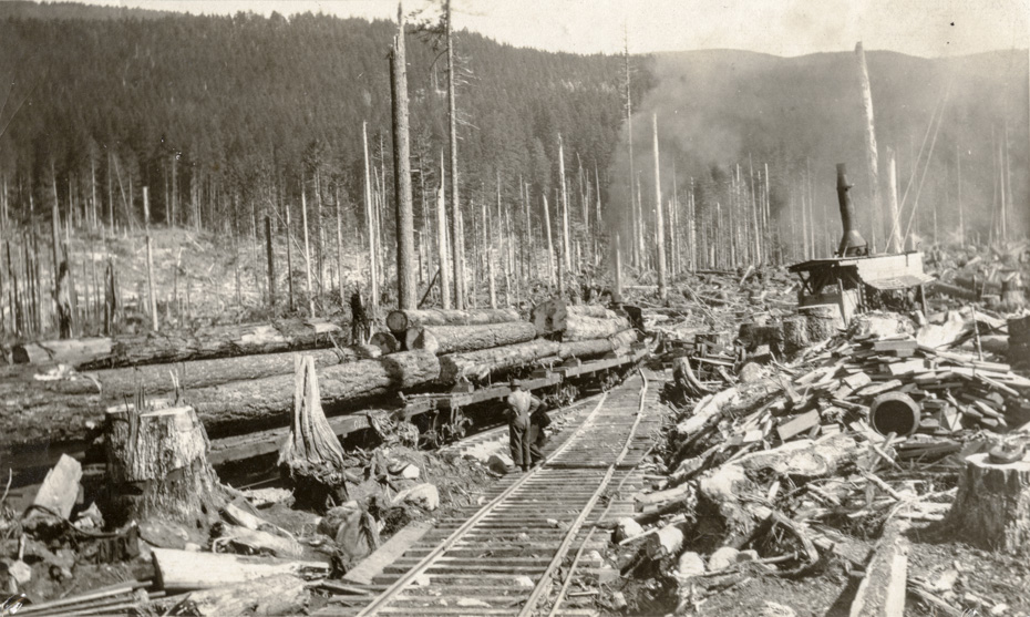 Logging Train Ready to Leave Forest Camp